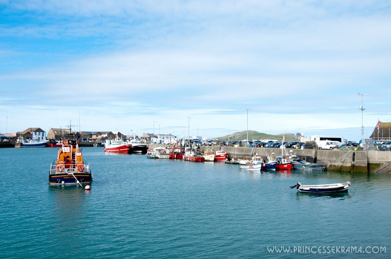 Visiter les environs de Dublin : Port Howth