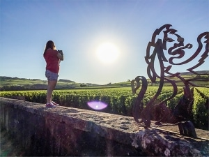 Mes premiers pas, pour visiter la Bourgogne