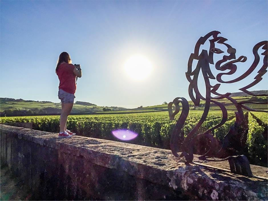Visiter la Bourgogne