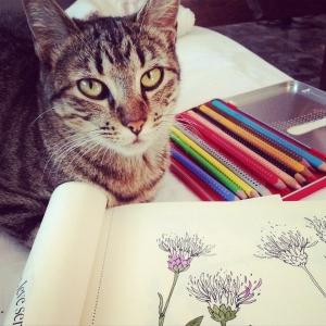 Mon premier atelier DIY Do it yourself avec les fleurs azalées