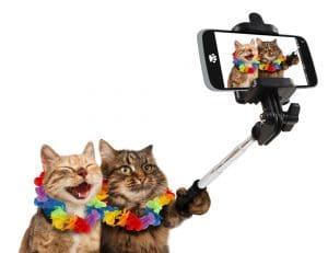 Conseils pour réussir ses photos avec un smartphone