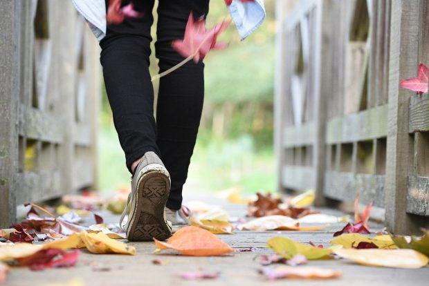 Pourquoi l'automne est-il la meilleure période de l'année pour perdre du poids ?